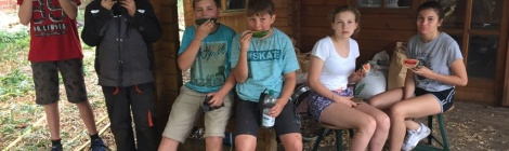 Kiwis und Wassermelonen aus dem Schulgarten!