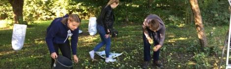 """Selbstgepresster Apfelsaft –die """"Garten-Crew"""" erweitert ihre Angebotspalette"""